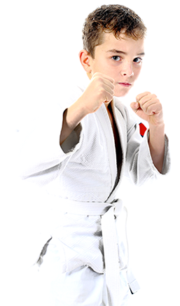 Kids Taekwondo Karate kenpo Martial Arts