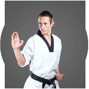Martial Arts MJA Martial Arts